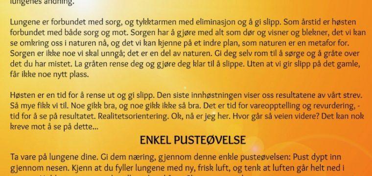 Skjermbilde 2017-09-17 kl. 20.40.05